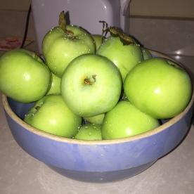 apples-in-bowl-2016