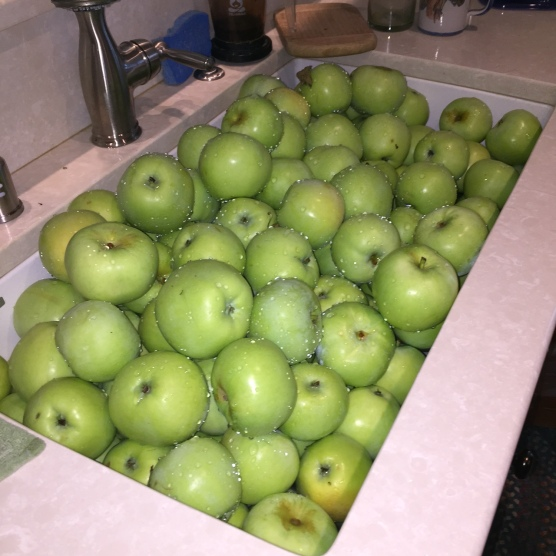 apples-in-sink-june-2016